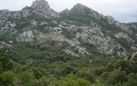 Monti Sette Fratelli