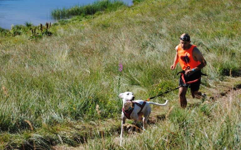 Canicross: correre e fare sport assieme al proprio cane. L'idea di un fotografo appassionato di running