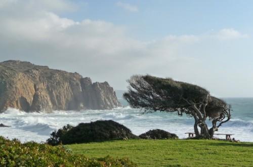 Meteo: maestrale e temperature in calo nel weekend in Sardegna