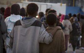Piccoli migranti