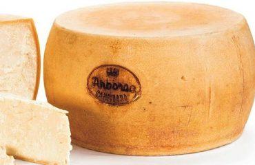 """Arriva in tavola il """"Gran Campidano"""", l'alternativa sarda a Parmigiano e a Grana"""