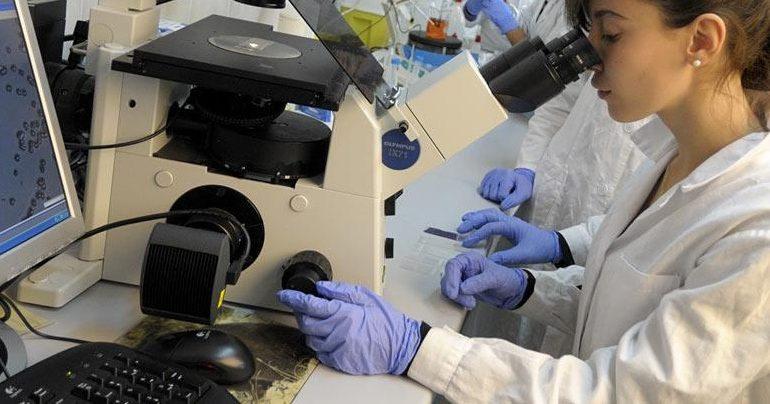 Scoperto da uno studio di Cnr e Università di Sassari il gene che causa sclerosi multipla e lupus