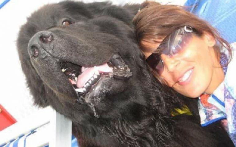 La storia di Sansone e Silvia: come l'amore di un cane può impedire di annegare in acqua e nelle proprie paure