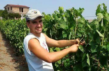 """Vinu. Luigi Giuntelli, 28 anni e due passioni: il vino e la terra. Alla scoperta di """"Nuovi Poderi"""", tra Cannonau barricato e Barbera Sardo"""
