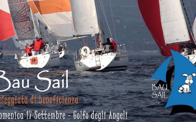 Bau Sail: veleggiata di beneficenza per aiutare i cani randagi. Si svolgerà tra Cagliari e Quartu Sant'Elena