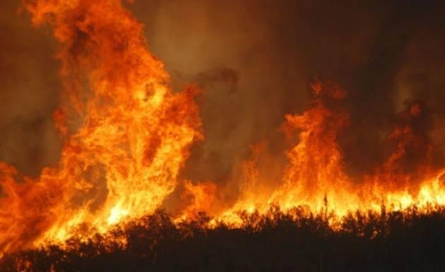 Incendio a Porto Rotondo: le fiamme raggiungono un villaggio turistico
