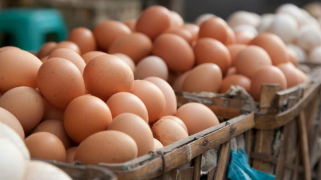 Uova al Fipronil: in Sardegna ritirate dai supermercati migliaia di confezioni