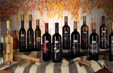Cantina Gostolai: identità, cultura e tradizione dei vini di Oliena
