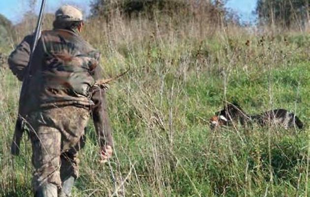 Calendario Venatorio Sardegna.Caccia Di Lepri Pernici E Conigli Selvatici In Sardegna