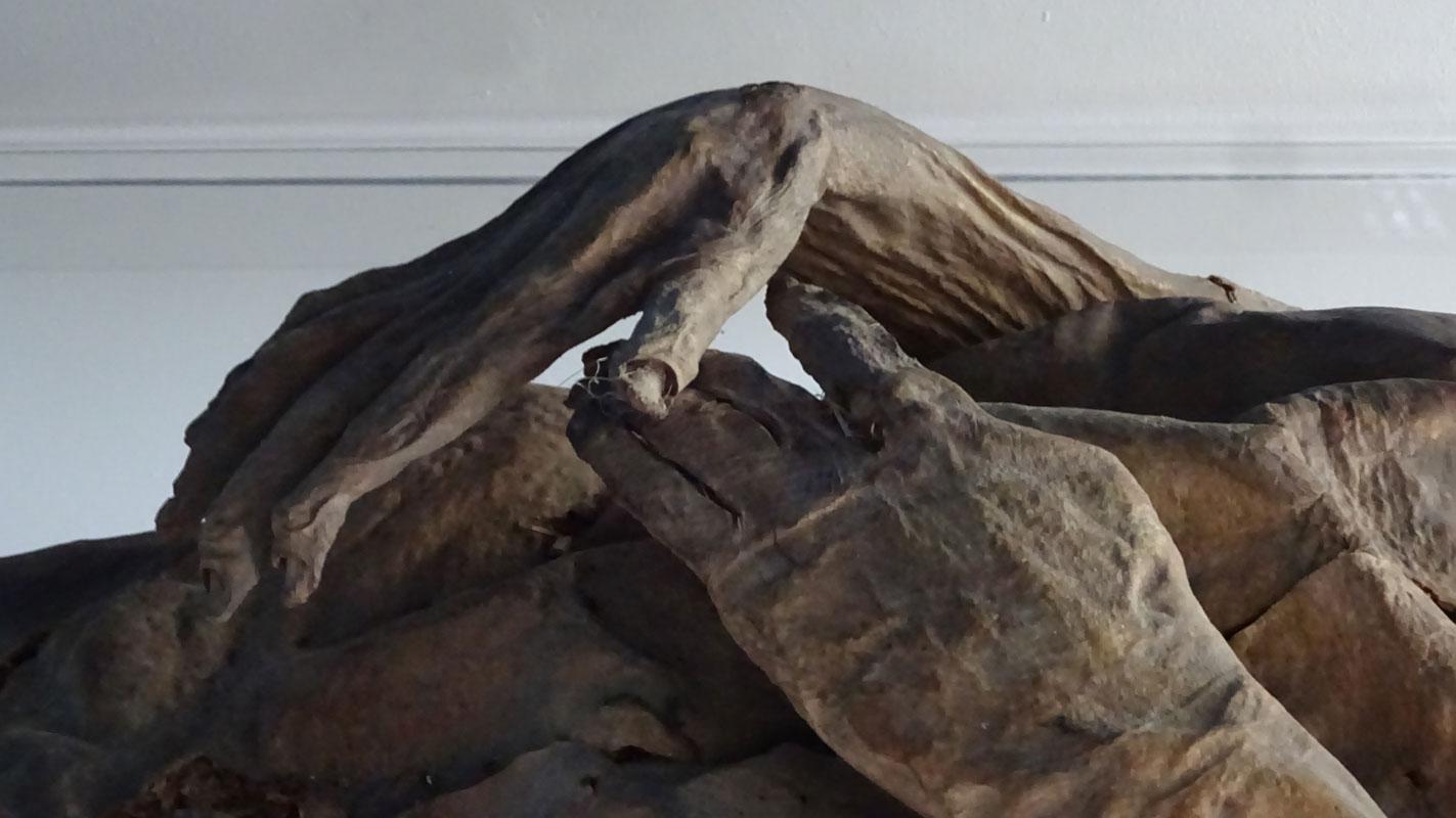 Dettaglio delle mani della mummia femminile