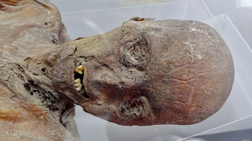 Mummia maschile del Seicento