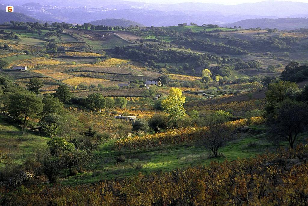 Atzara, il paesaggio circostante - Fonte www.sardegnaturismo.it
