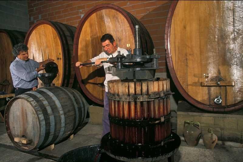 Atzara, l'antica tradizione del vino - Fonte Comune di Atzara