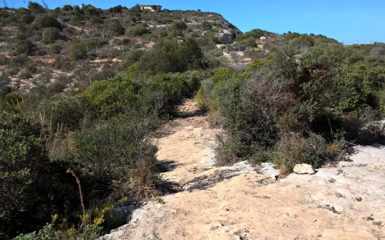 """""""Via le mountain bike dalla Sella del Diavolo"""": gli ecologisti del Grig contro le bici sui sentieri naturalistici"""