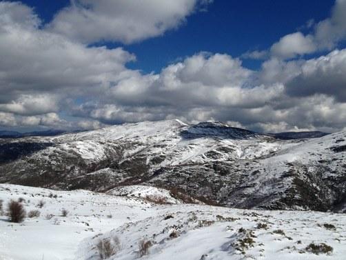 Doppia allerta meteo a Firenze, per vento forte e rischio neve