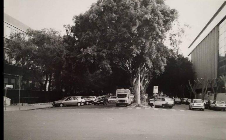 La Cagliari che non c'è più: via Amat diversi anni fa, quando c'erano ancora gli alberi