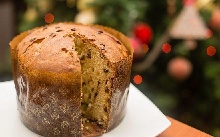 Sua maestà il panettone: è uno dei dolci per antonomasia del Natale. Ma sapreste riconoscere se è buono davvero?