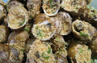 La ricetta Vistanet di oggi: lumaconi ripieni, un piatto non semplice da preparare ma particolarmente gustoso