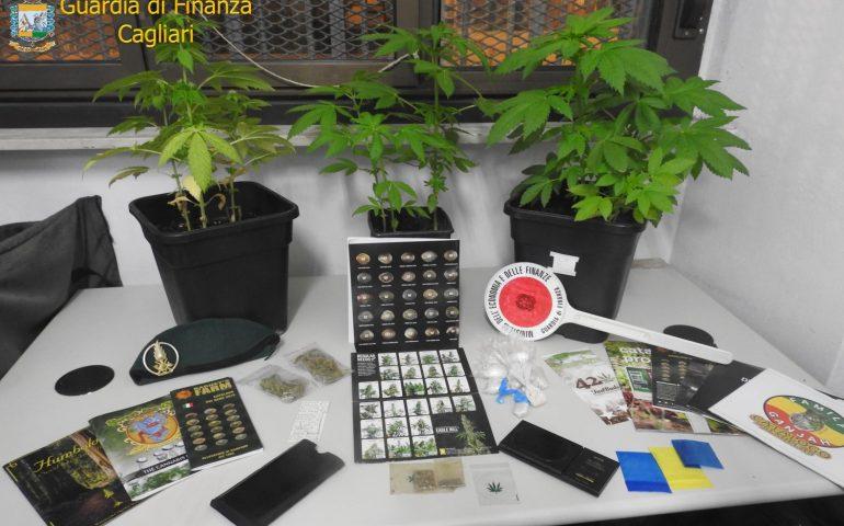 Sant'Elia, droga, piante e semi di marijuana in casa: denunciato un cagliaritano