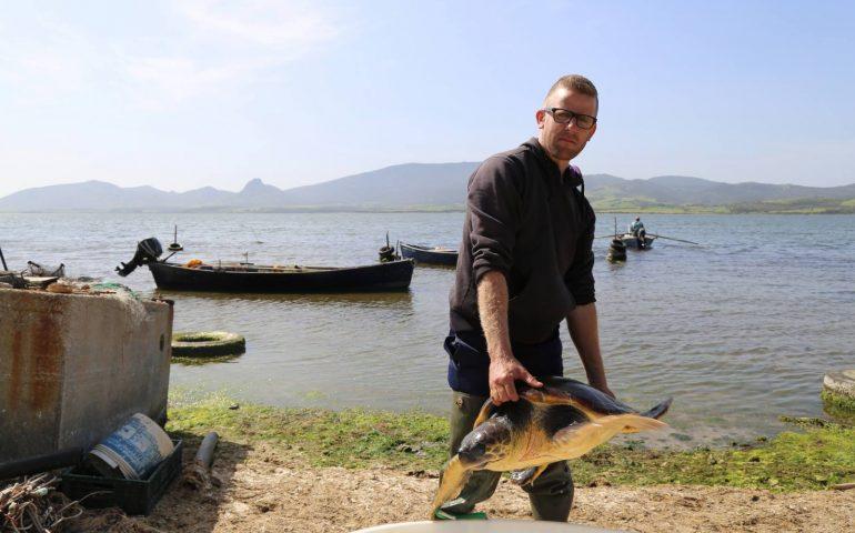 marcedd pescatore recupera uno splendido esemplare tartaruga caretta caretta cagliari. Black Bedroom Furniture Sets. Home Design Ideas