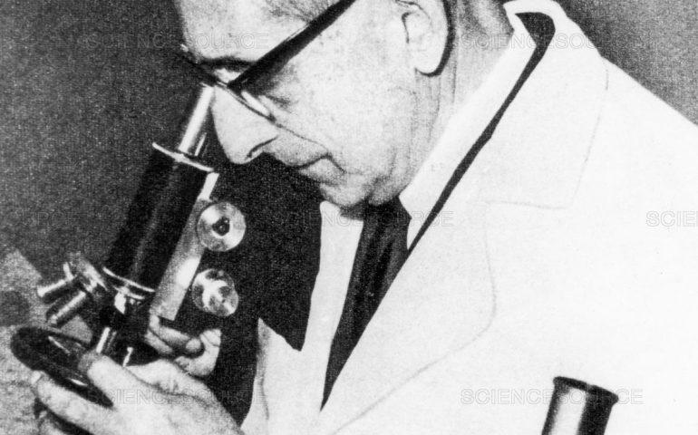 Accadde oggi. 8 aprile 1976: muore a Cagliari Giuseppe Brotzu scopritore delle cefalosporine