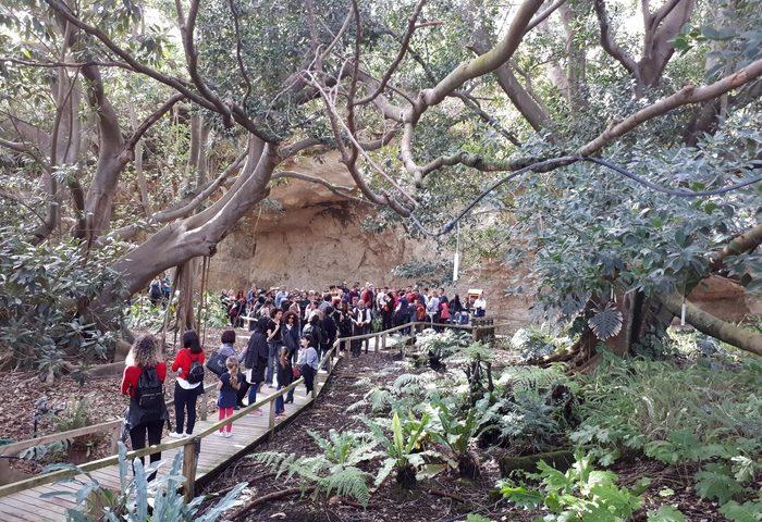 Orto Botanico di Cagliari, 2019 anno da record: più di 63mila visitatori