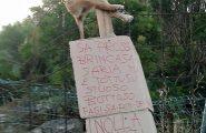 Episodio choc in Ogliastra: cane crocifisso e cartelli di minaccia. Macabra intimidazione contro un imprenditore