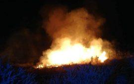 Parco di Molentargius: nella notte un nuovo incendio con fiamme alte 6 metri