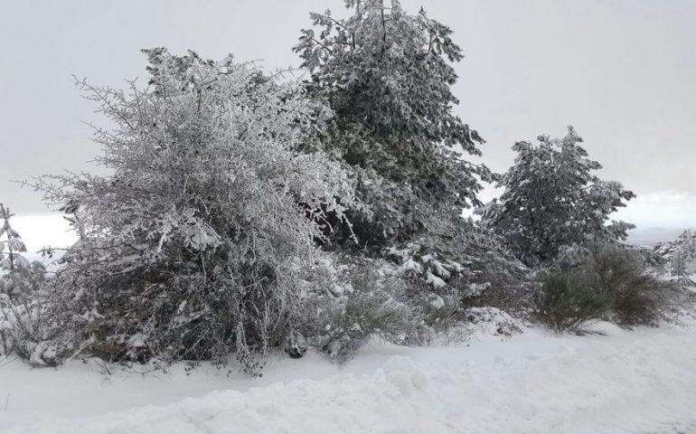 Limbara: ritrovato nella notte il 44enne disperso sui monti tra la neve e al gelo