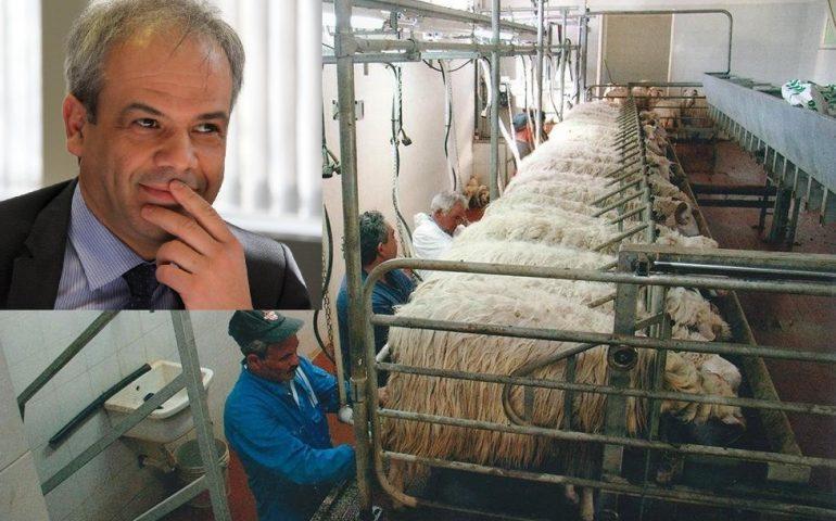 """Prezzo del latte, la provocazione di Andrea Murgia: """"Immaginate di pagare la benzina con il latte"""""""