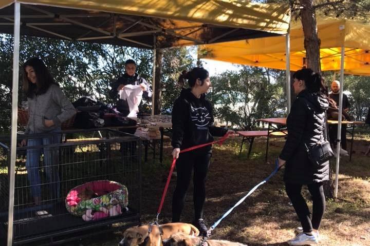 Sinnai, inaugurata oggi la nuova grande area riservata ai cani