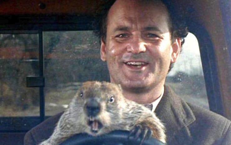 Dalla Candelora al Giorno della marmotta: Ecco cosa si festeggia il 2 febbraio