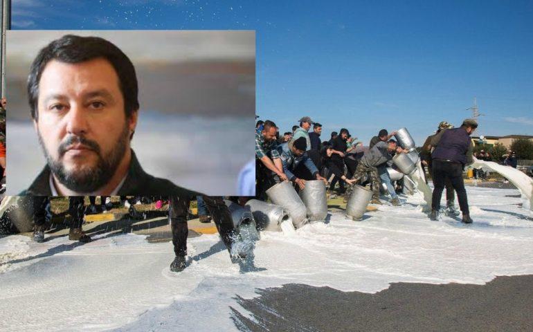 """Salvini con i pastori sardi ma Deiana (Anci) ricorda: """"Le multe per le quote latte del Nord le hanno pagate gli italiani"""""""