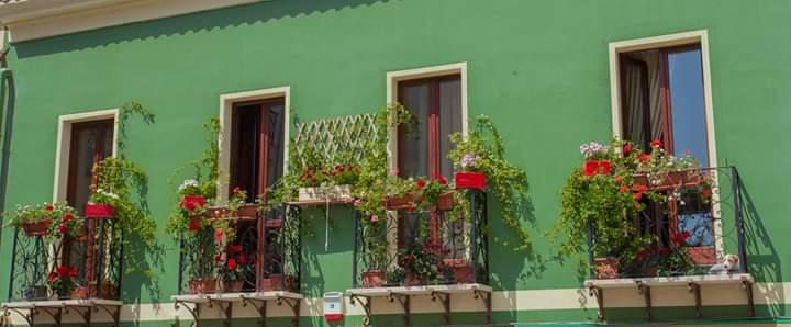"""Torna """"Balconi Fioriti"""" e Villanova si veste di fiori e colori. Stasera """"Su Bandu"""" con Rossella Faa"""