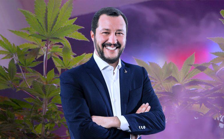 """Matteo Salvini sui negozi di cannabis light: """"Li chiuderò uno a uno"""""""