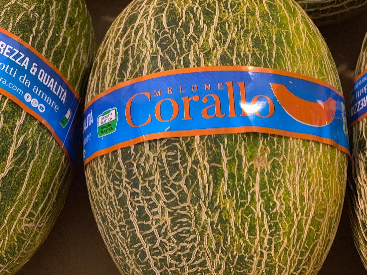 corallo-orto-di-elonora 2