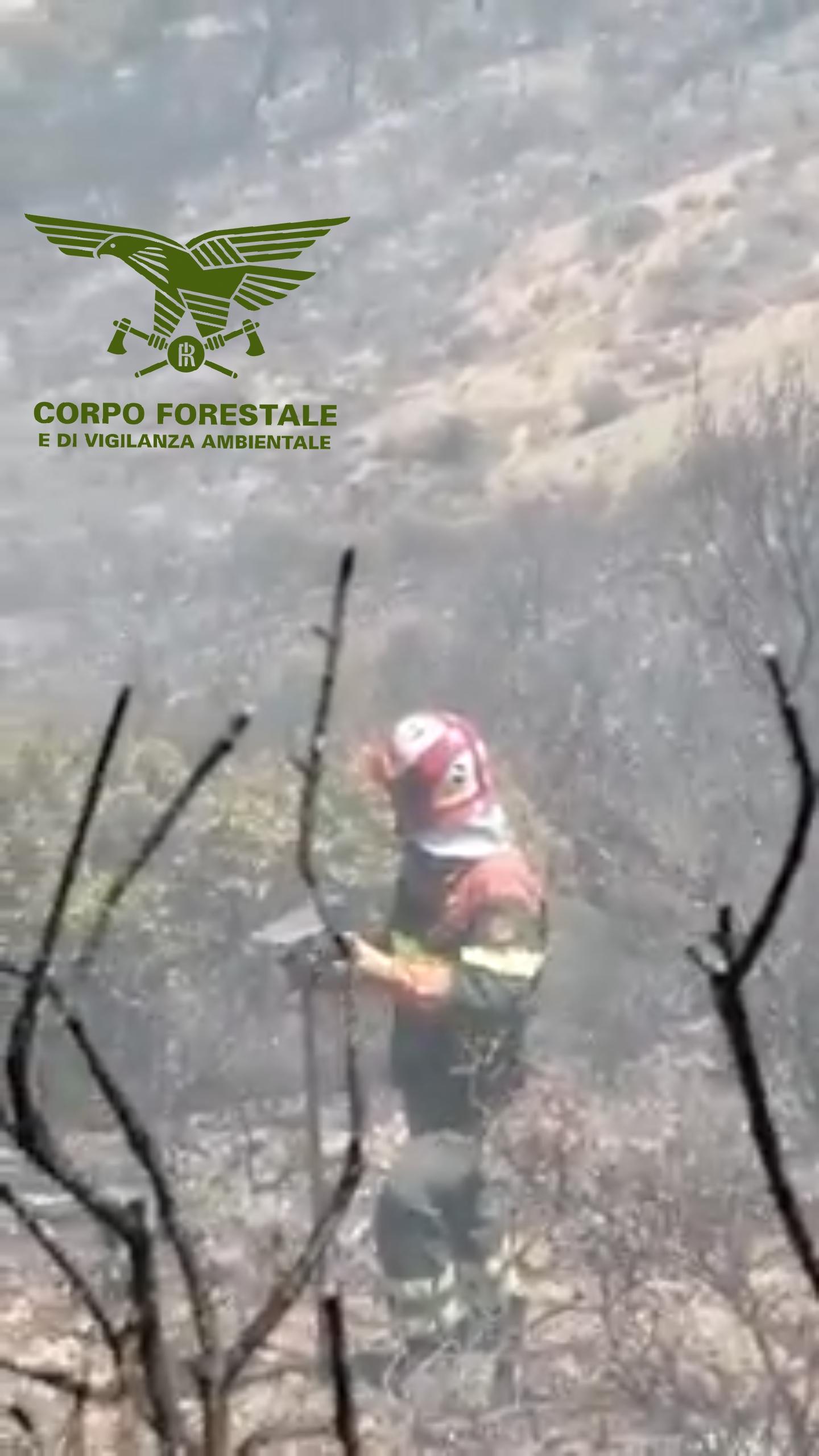 Incendi in Sardegna dell'11 luglio 2019