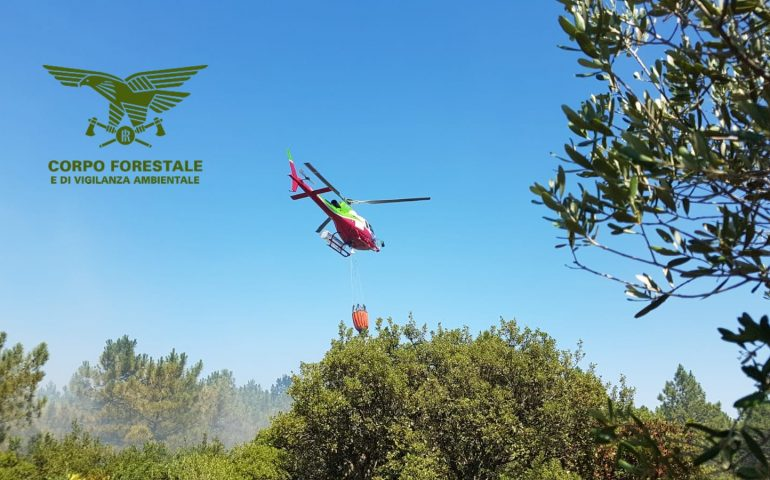 Vasto incendio a Torpè: il Maestrale complica le operazioni di spegnimento con canadair ed elicotteri