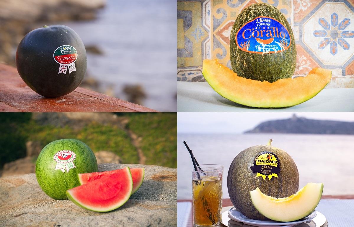 orto-di-elonora-angurie-meloni-fantastici-4