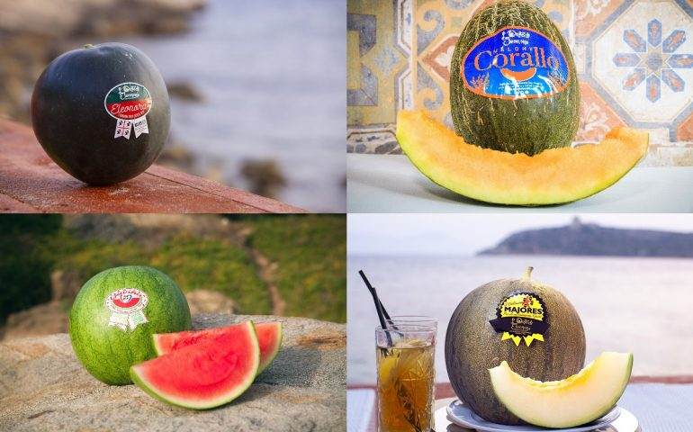 Estate, tempo di angurie e meloni. Gavina, Eleonora, Corallo e Maiores, i 'fantastici 4' de L'Orto di Eleonora