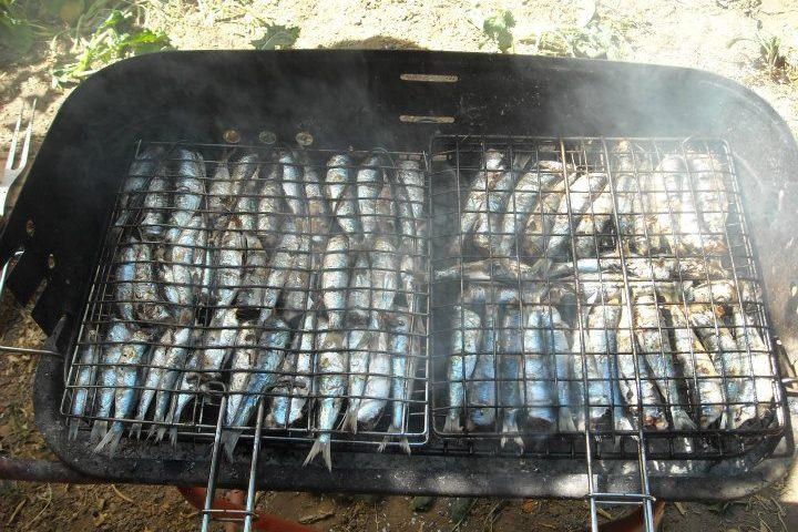 La ricetta Vistanet di oggi: sardine arrosto a sa casteddaia