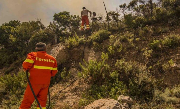 I dipendenti Forestas delusi dalla Giunta preparano un nuovo sciopero generale
