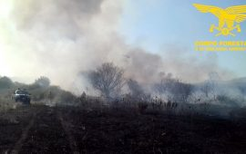 Fiamme nell'Isola: oltre Molentargius, anche oggi incendi dal nord al sud della Sardegna