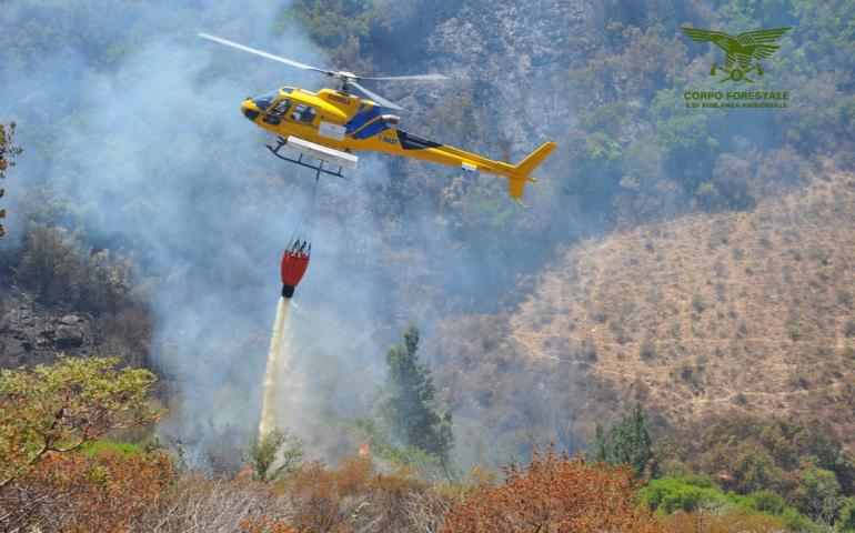 La macchina antincendio funziona: 60 % di superficie bruciata in meno rispetto alla media degli ultimi 10 anni
