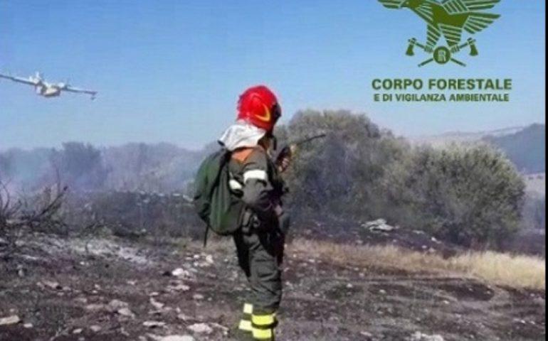Ancora fuoco in Sardegna da nord a sud, incendi lungo tutta l'Isola