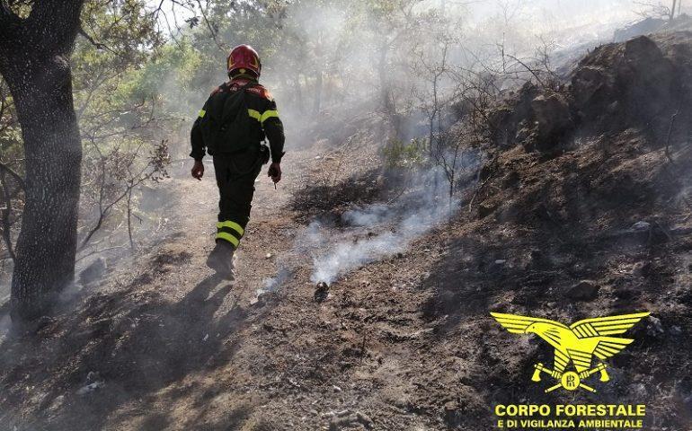 Sono arrivate le piogge, ma il fuoco divampa in tutta l'Isola, oggi 15 incendi