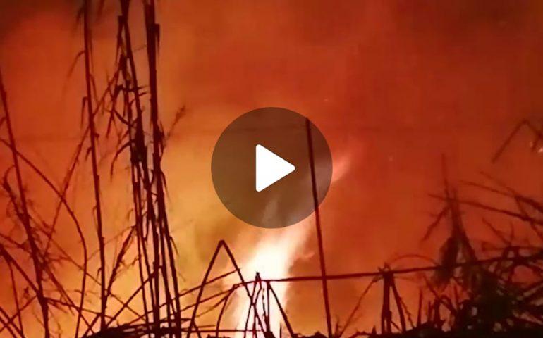 (VIDEO) Notte di fuoco nel cagliaritano: vasto incendio devasta le campagne di Dolianova, Ussana e Serdiana