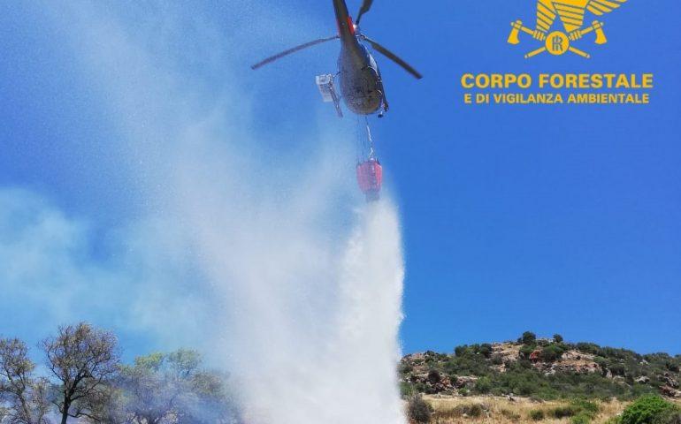 """Grosso incendio nel sassarese, in campo elicotteri e canadair. Solinas: """"Ore drammatiche per la Sardegna"""""""