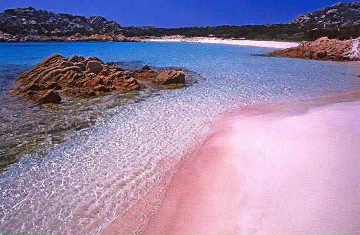 La foto. Gli incredibili colori della Spiaggia Rosa sull'isola di Budelli