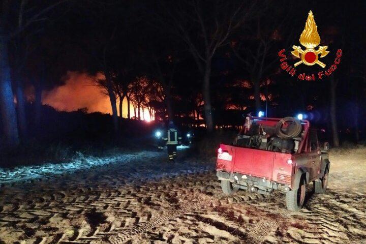 Arborea: c'è un indagato per l'incendio doloso che a ottobre ha bruciato 73 ettari di macchia mediterranea